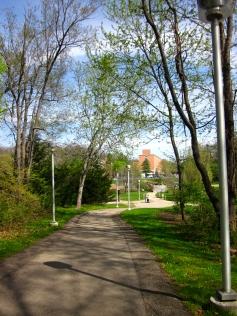The Western Michigan Campus, Kalamazoo - just add 3000 medievalists